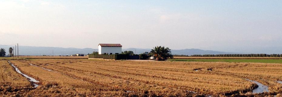 Two days in Ebro Delta